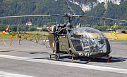 Austrian Army - Photo und Copyright by Walter Schachner